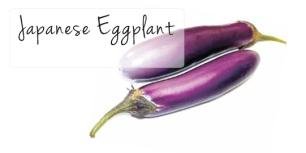 Eggplant Japanese